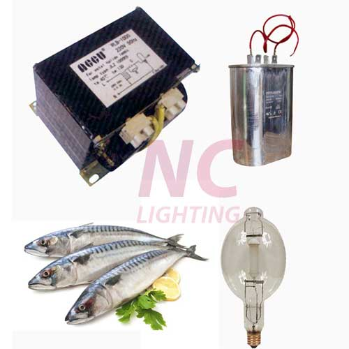 Bộ đèn đánh bắt cá 500W
