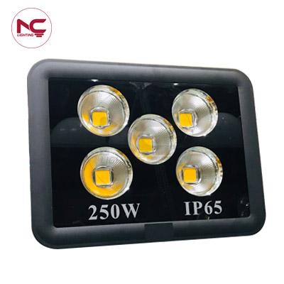 Đèn pha led 250W PNC39